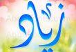 زياد Zeyad