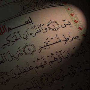 سورة يس خط مصحف مصر